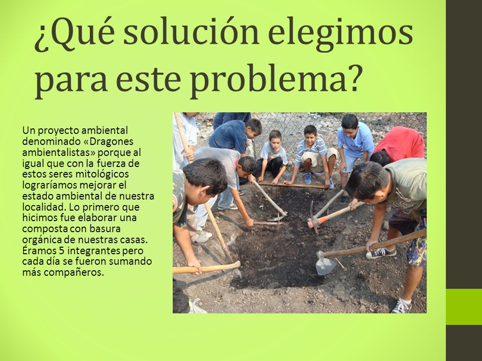¿Qué solución elegimos para este problema