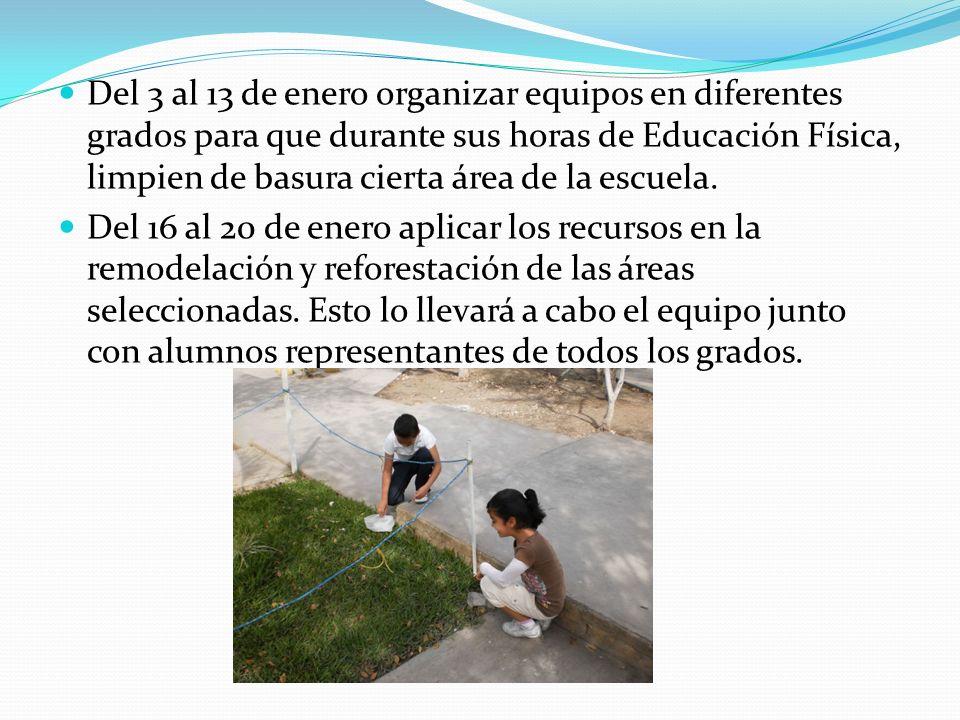 Del 3 al 13 de enero organizar equipos en diferentes grados para que durante sus horas de Educación Física, limpien de basura cierta área de la escuela.