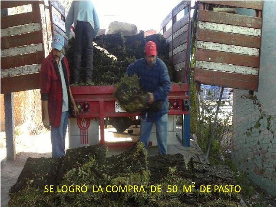SE LOGRÓ LA COMPRA DE 50 M2 DE PASTO