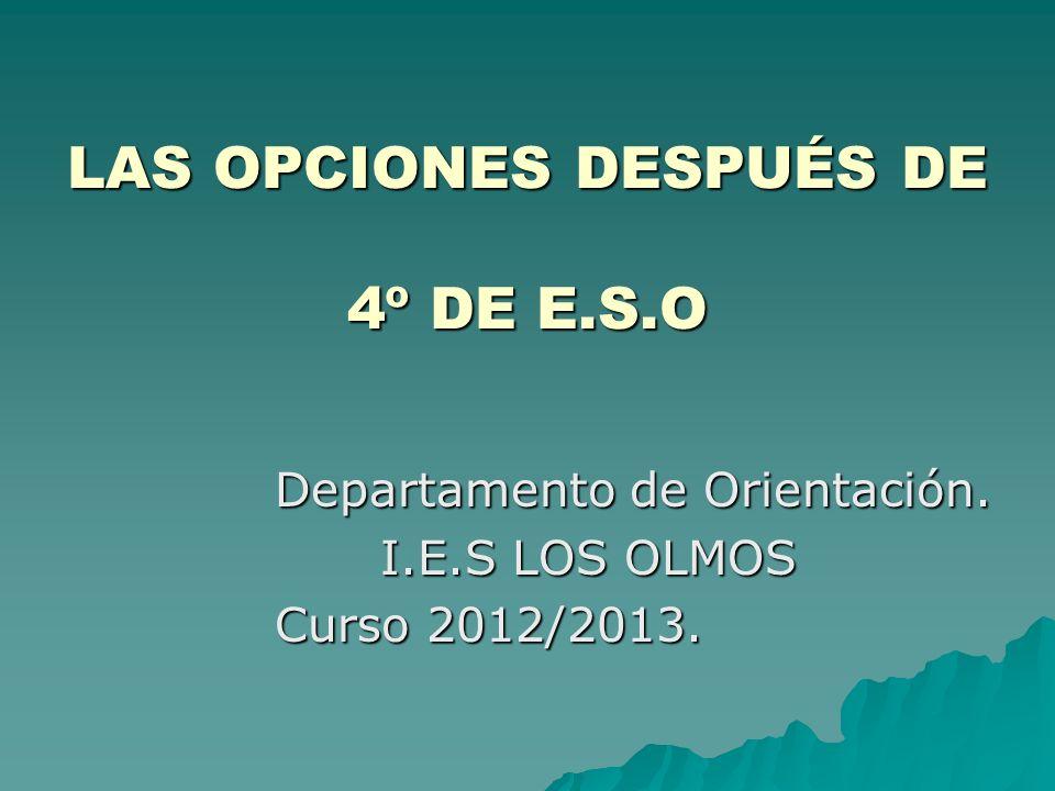 LAS OPCIONES DESPUÉS DE 4º DE E.S.O