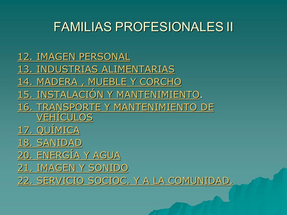 FAMILIAS PROFESIONALES II