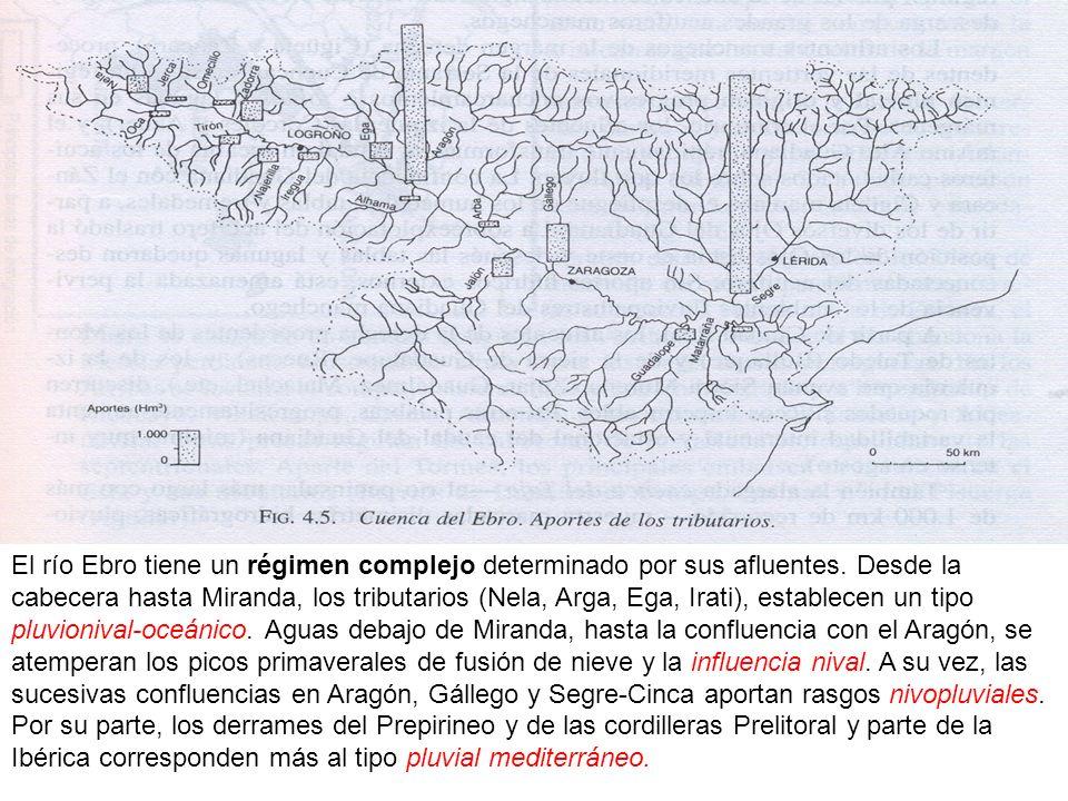 El río Ebro tiene un régimen complejo determinado por sus afluentes