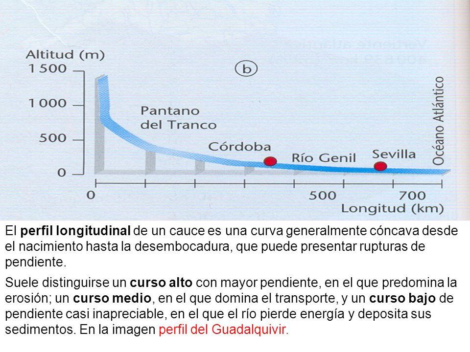 El perfil longitudinal de un cauce es una curva generalmente cóncava desde el nacimiento hasta la desembocadura, que puede presentar rupturas de pendiente.