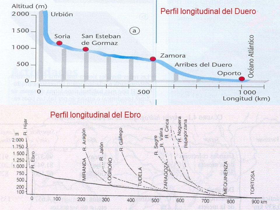 Perfil longitudinal del Duero