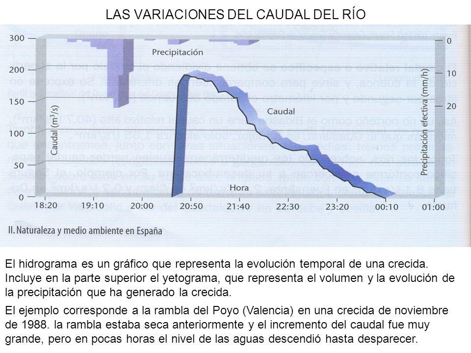 LAS VARIACIONES DEL CAUDAL DEL RÍO