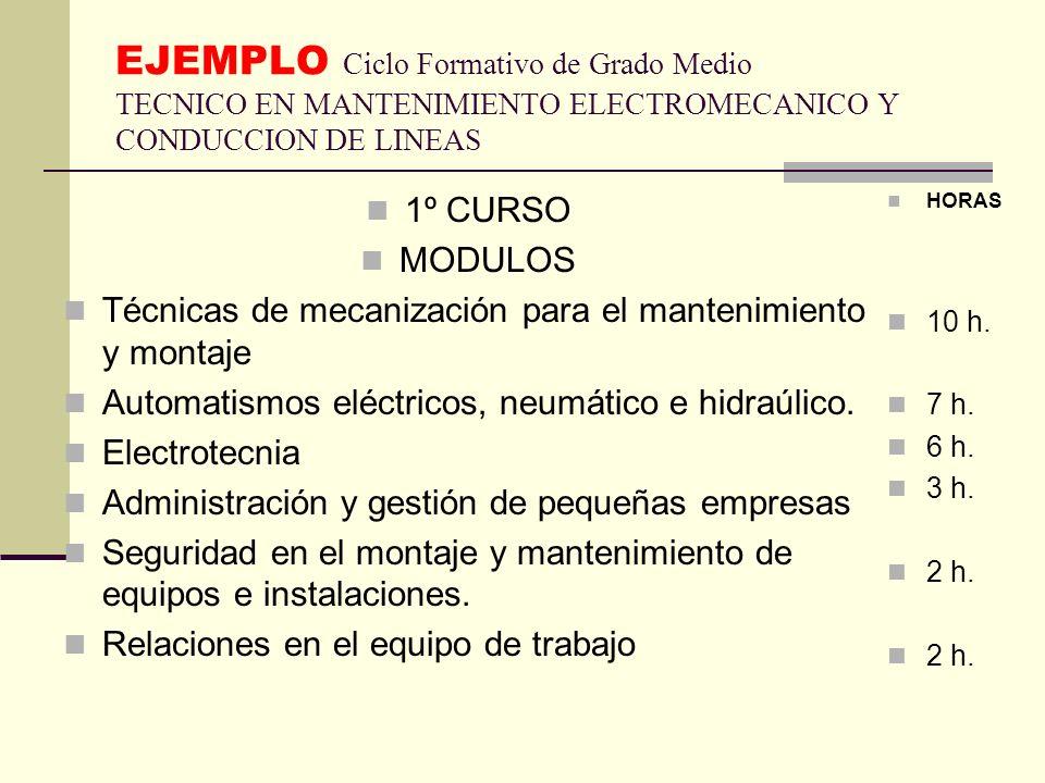 EJEMPLO Ciclo Formativo de Grado Medio TECNICO EN MANTENIMIENTO ELECTROMECANICO Y CONDUCCION DE LINEAS
