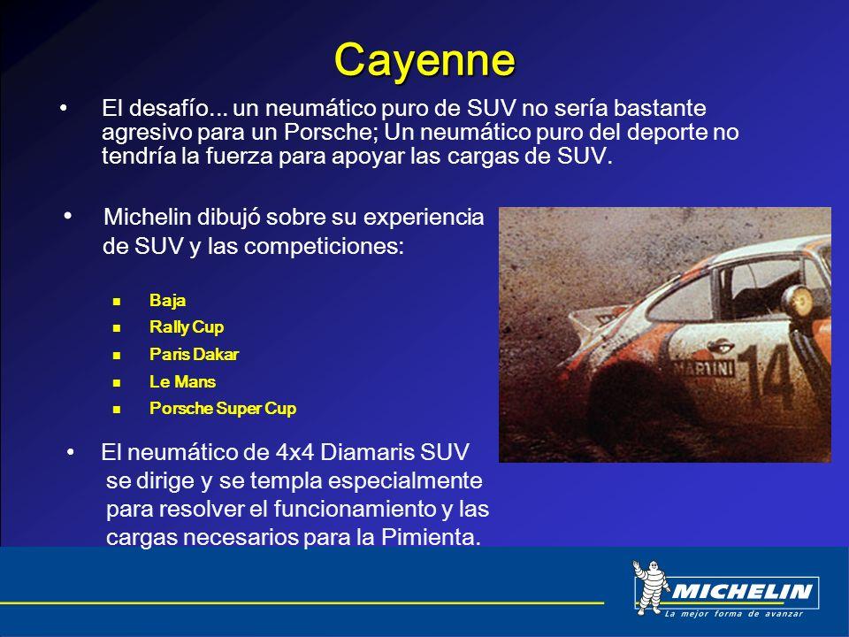 Cayenne Michelin dibujó sobre su experiencia