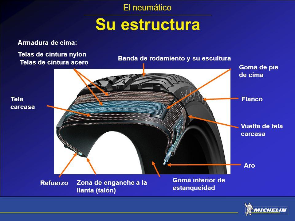 Su estructura El neumático Armadura de cima: Telas de cintura nylon