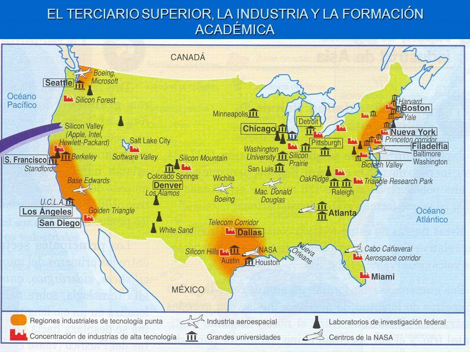 EL TERCIARIO SUPERIOR, LA INDUSTRIA Y LA FORMACIÓN ACADÉMICA