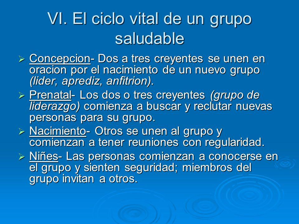 VI. El ciclo vital de un grupo saludable