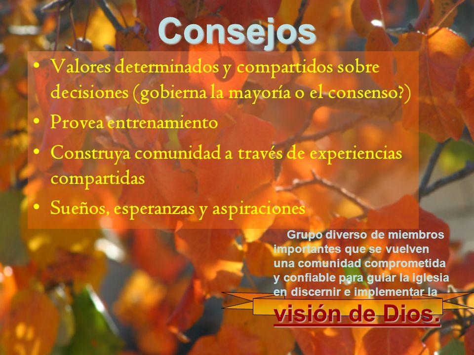 Consejos Valores determinados y compartidos sobre decisiones (gobierna la mayoría o el consenso ) Provea entrenamiento.