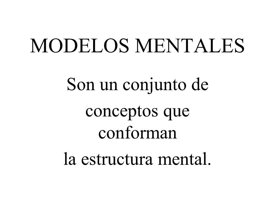 Son un conjunto de conceptos que conforman la estructura mental.