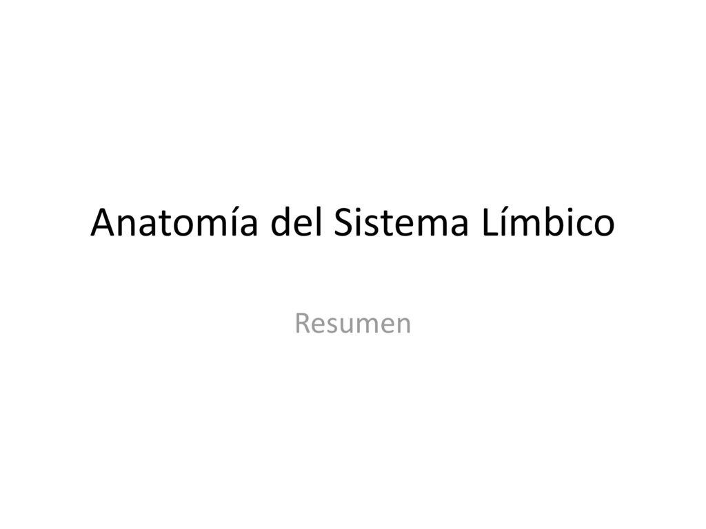 Atractivo Diploma En La Anatomía Molde - Anatomía de Las Imágenesdel ...