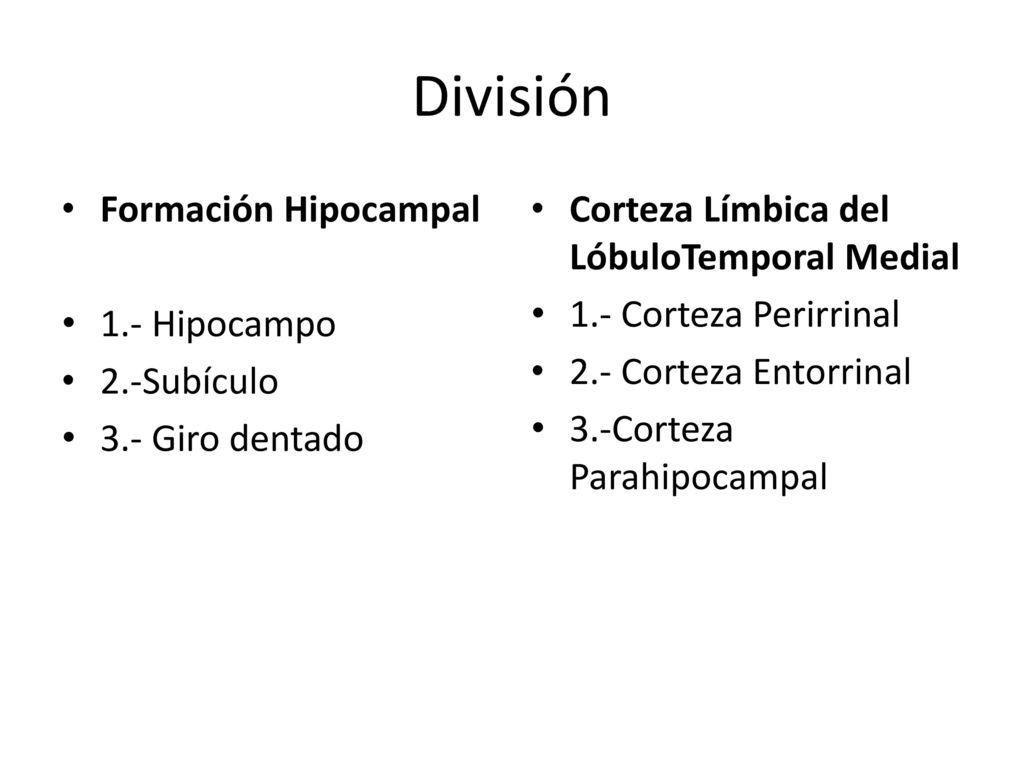 Contemporáneo Orbitar La Anatomía Mri Regalo - Anatomía de Las ...
