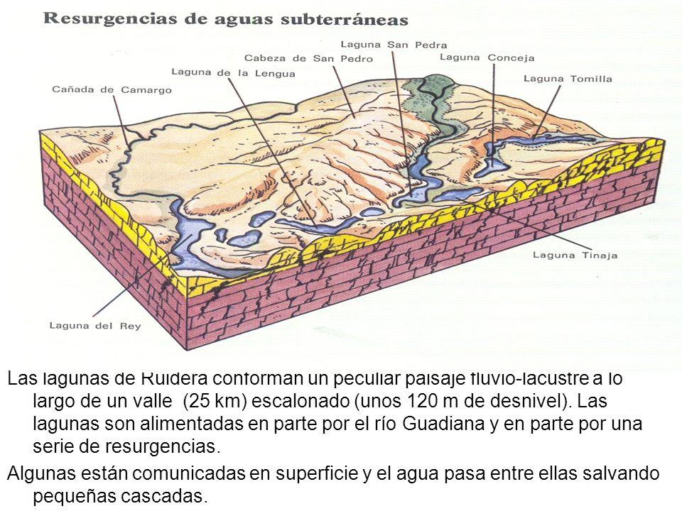 Las lagunas de Ruidera conforman un peculiar paisaje fluvio-lacustre a lo largo de un valle (25 km) escalonado (unos 120 m de desnivel). Las lagunas son alimentadas en parte por el río Guadiana y en parte por una serie de resurgencias.