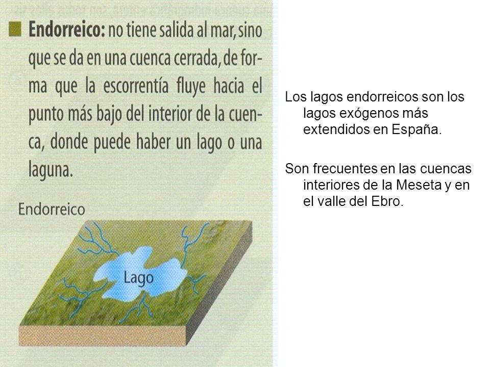 Los lagos endorreicos son los lagos exógenos más extendidos en España.