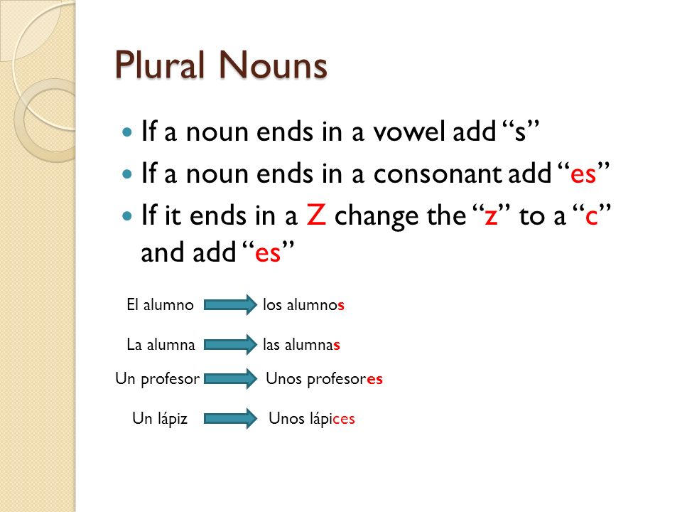 Plural Nouns If a noun ends in a vowel add s