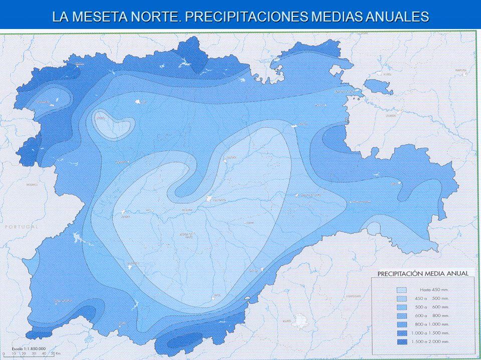 LA MESETA NORTE. PRECIPITACIONES MEDIAS ANUALES