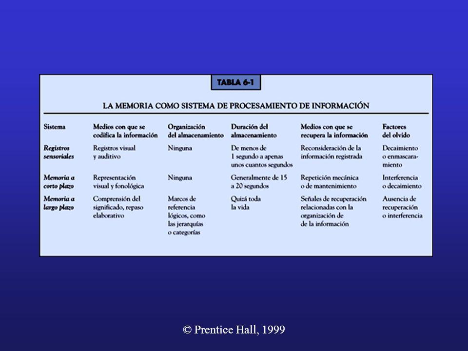La Memoria como sistema de procesamiento de información