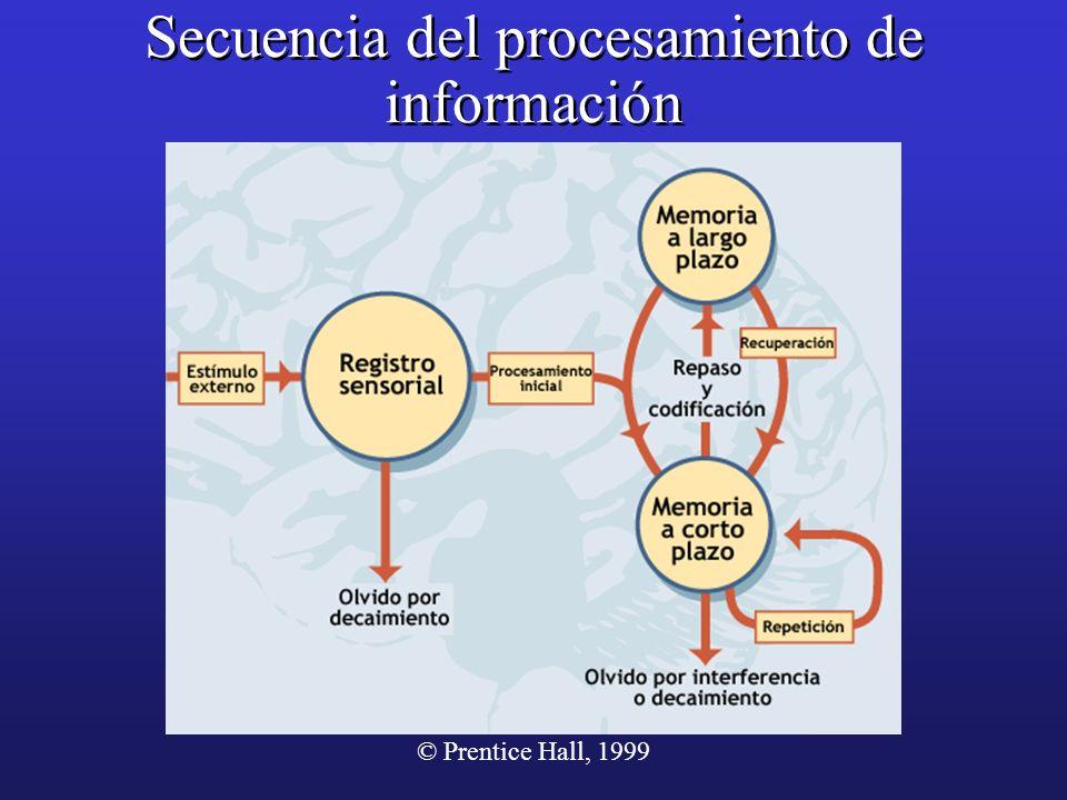 Secuencia del procesamiento de información