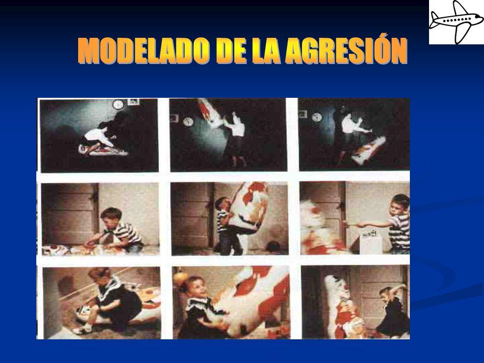 MODELADO DE LA AGRESIÓN