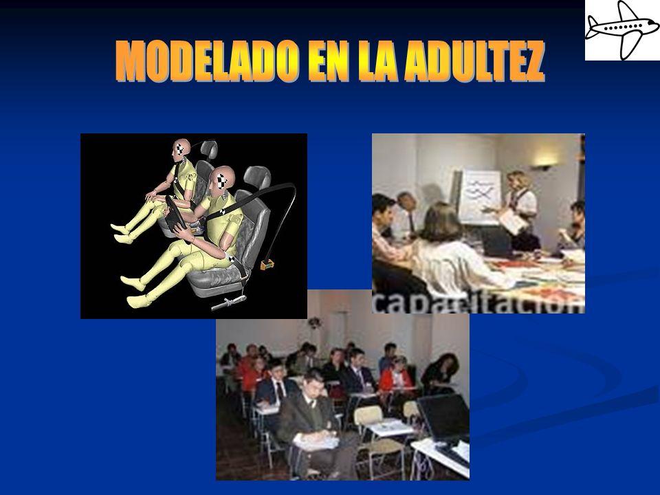 MODELADO EN LA ADULTEZ