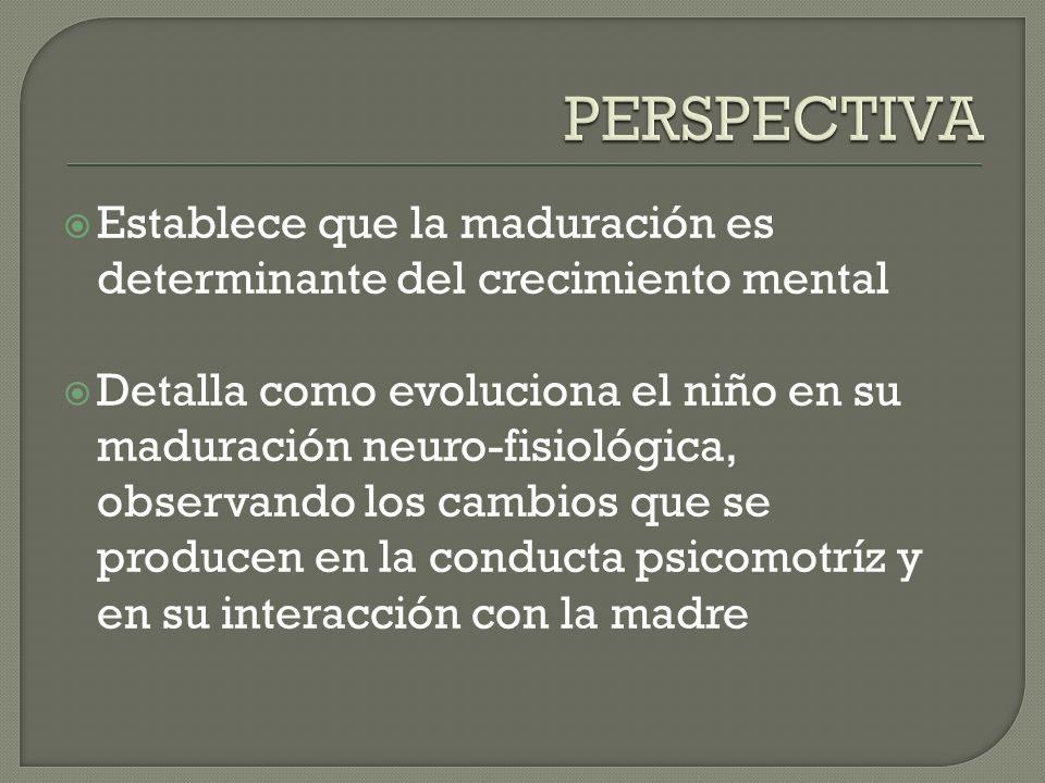PERSPECTIVA Establece que la maduración es determinante del crecimiento mental.