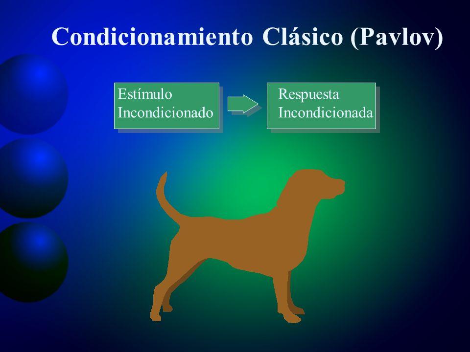 Condicionamiento Clásico (Pavlov)