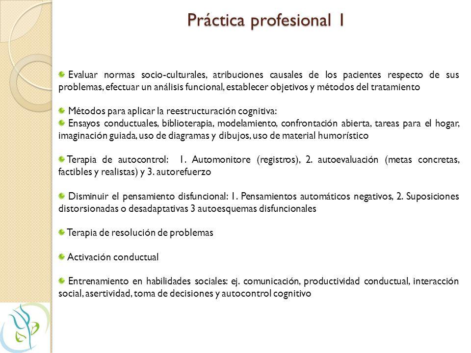 Práctica profesional 1