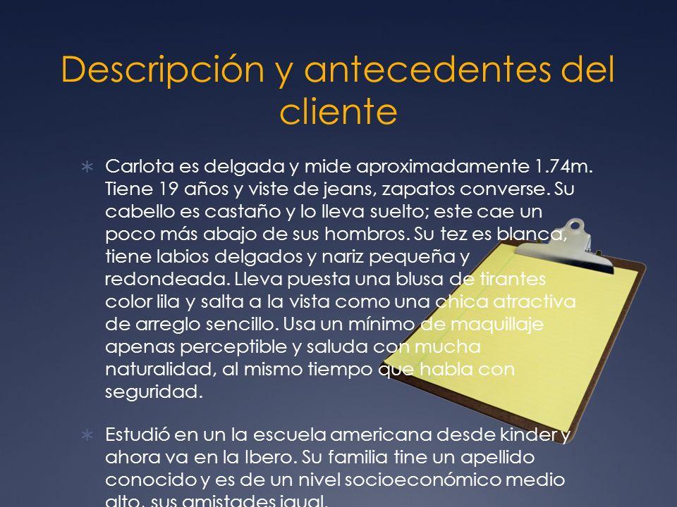 Descripción y antecedentes del cliente