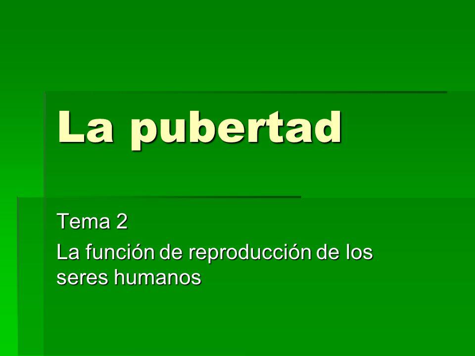 Tema 2 La función de reproducción de los seres humanos
