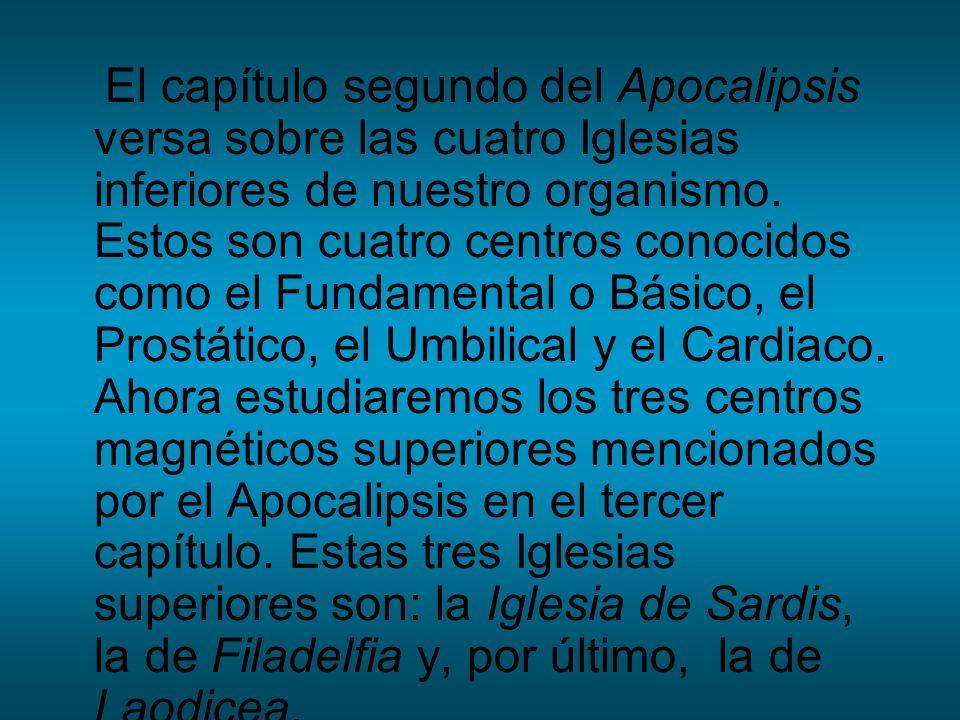 El capítulo segundo del Apocalipsis versa sobre las cuatro Iglesias inferiores de nuestro organismo.