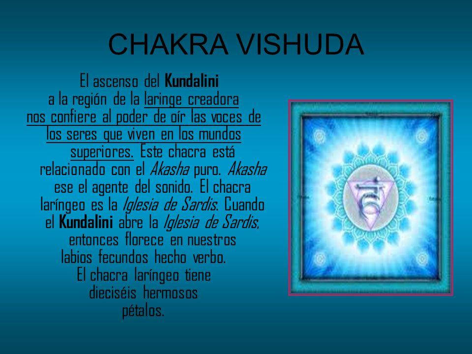 CHAKRA VISHUDA a la región de la laringe creadora