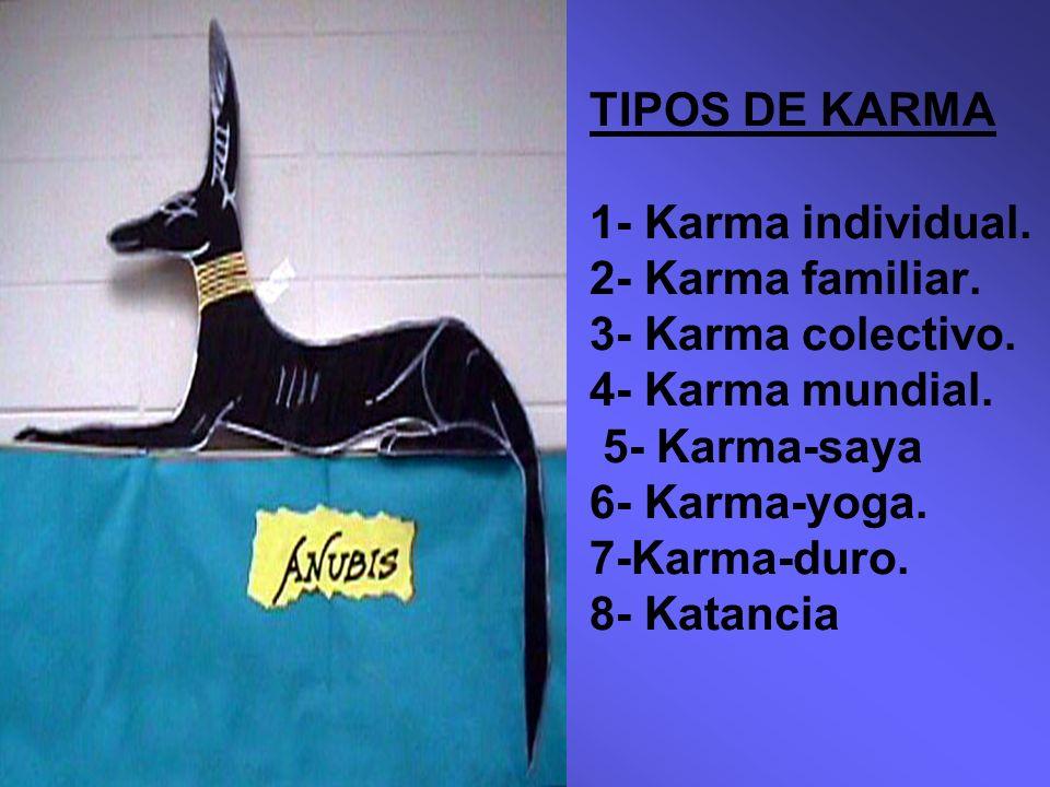 TIPOS DE KARMA 1- Karma individual. 2- Karma familiar