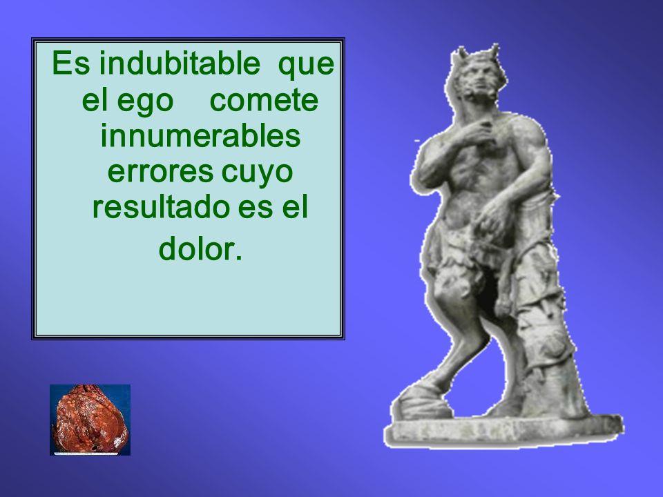 Es indubitable que el ego comete innumerables errores cuyo resultado es el dolor.