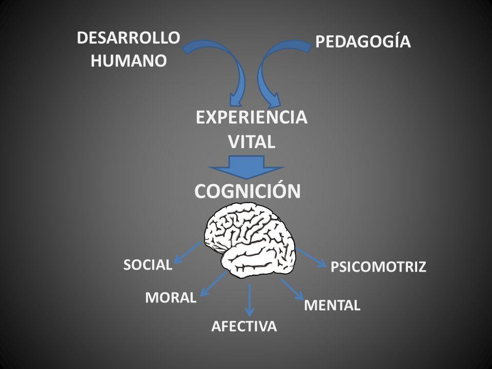 COGNICIÓN EXPERIENCIA VITAL DESARROLLO HUMANO PEDAGOGÍA SOCIAL