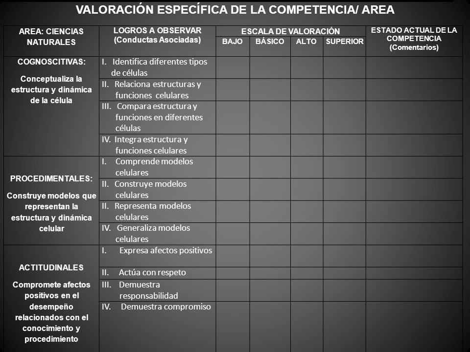 VALORACIÓN ESPECÍFICA DE LA COMPETENCIA/ AREA