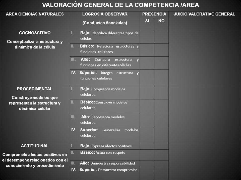 VALORACIÓN GENERAL DE LA COMPETENCIA /AREA