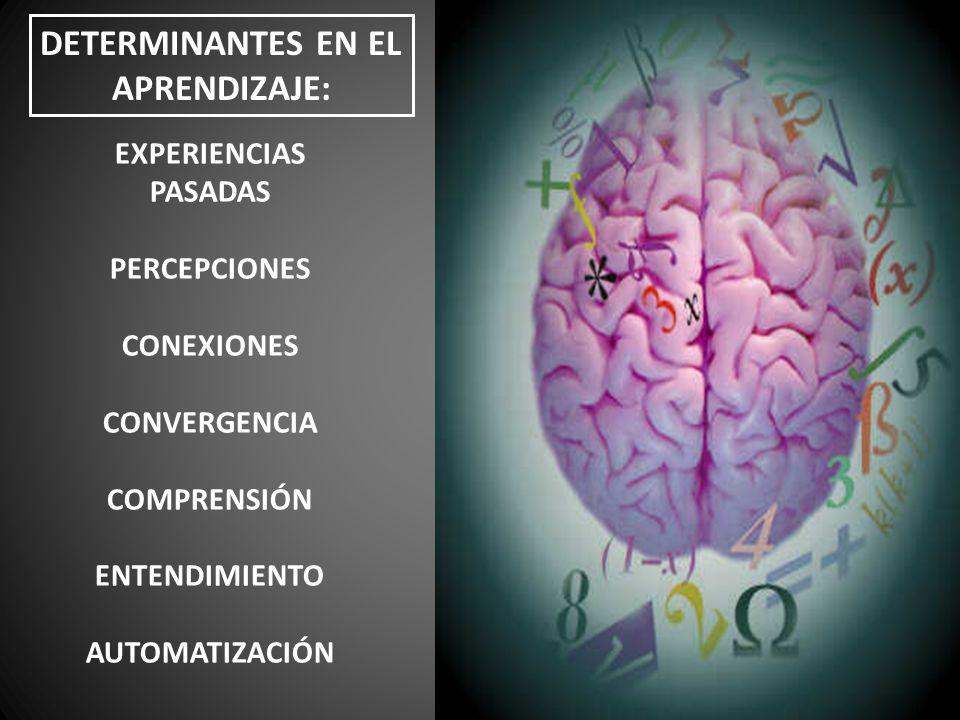 DETERMINANTES EN EL APRENDIZAJE: