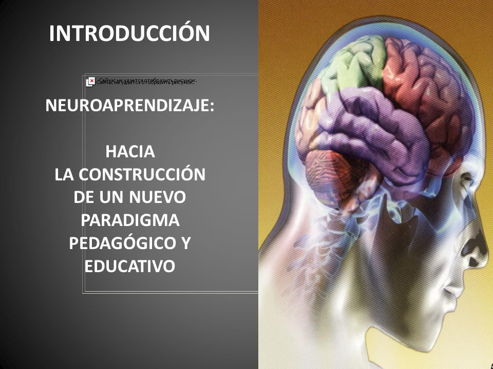PEDAGÓGICO Y EDUCATIVO