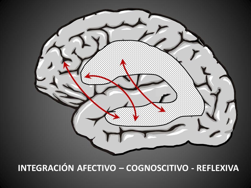 INTEGRACIÓN AFECTIVO – COGNOSCITIVO - REFLEXIVA