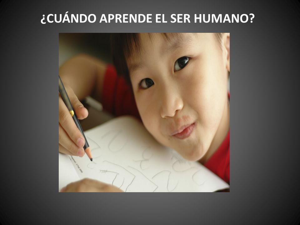 ¿CUÁNDO APRENDE EL SER HUMANO