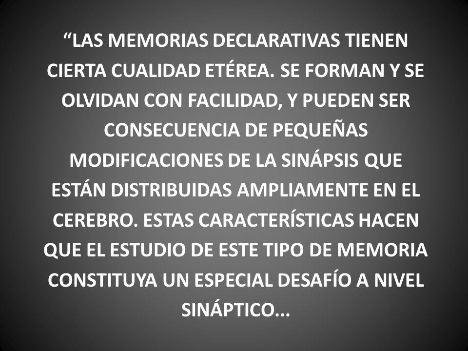 LAS MEMORIAS DECLARATIVAS TIENEN CIERTA CUALIDAD ETÉREA