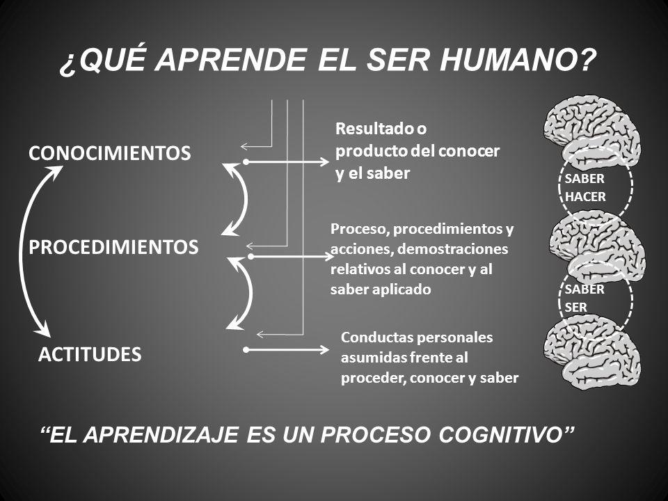 ¿QUÉ APRENDE EL SER HUMANO