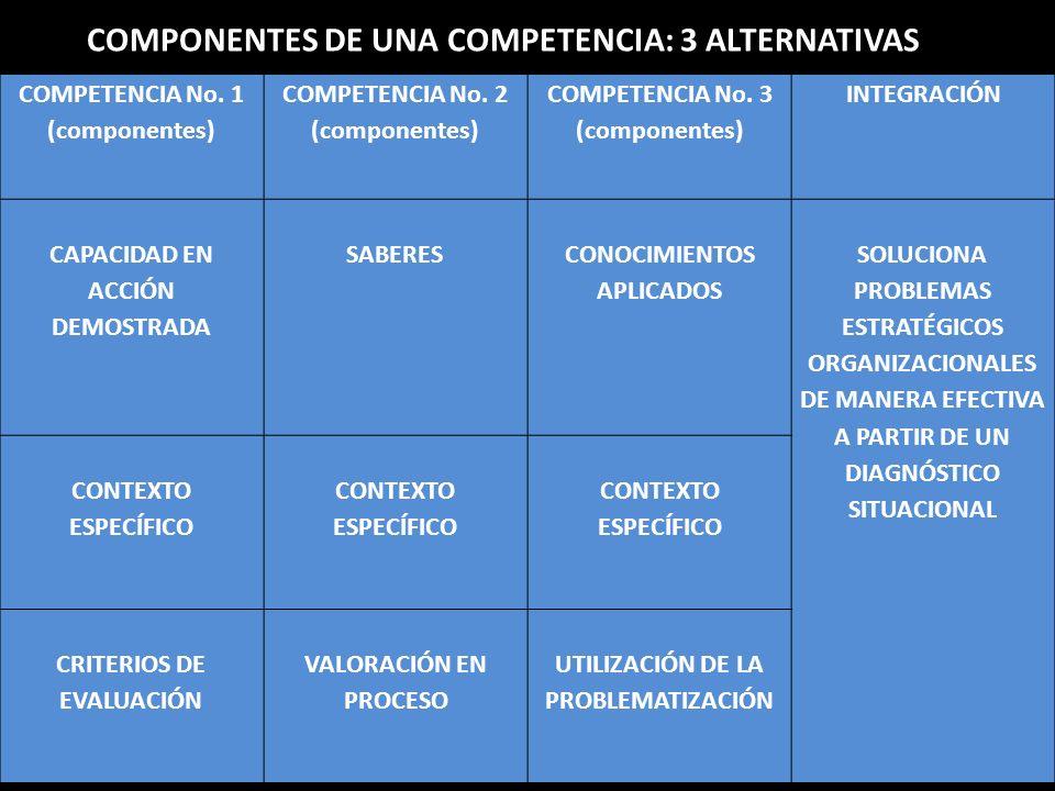 COMPONENTES DE UNA COMPETENCIA: 3 ALTERNATIVAS