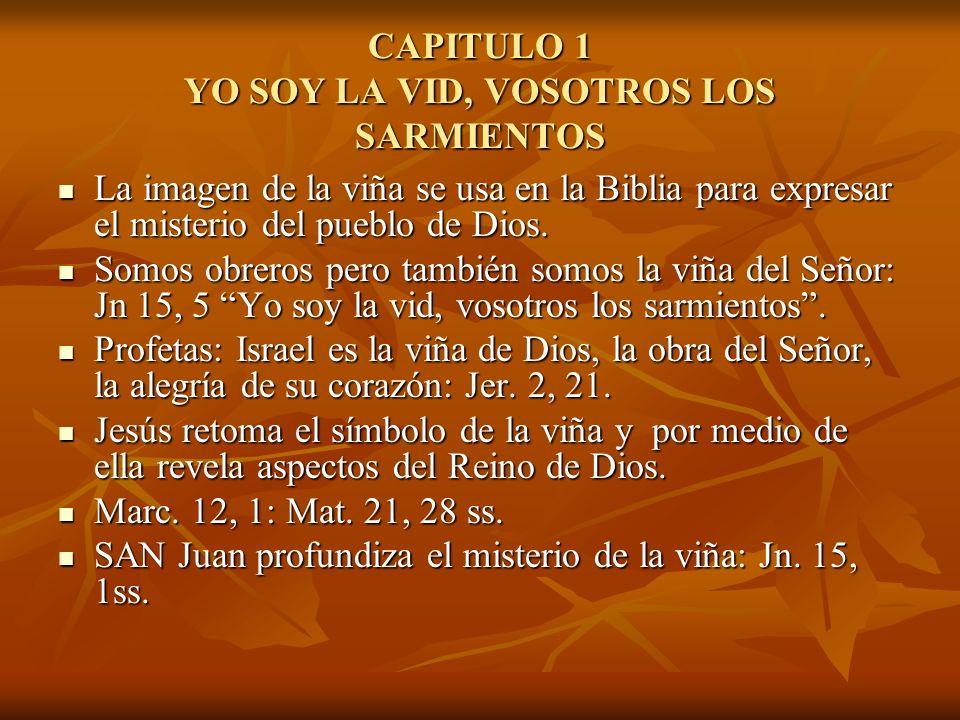 CAPITULO 1 YO SOY LA VID, VOSOTROS LOS SARMIENTOS