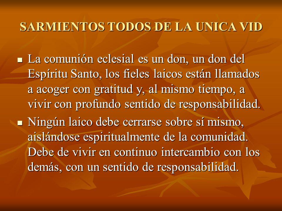 SARMIENTOS TODOS DE LA UNICA VID