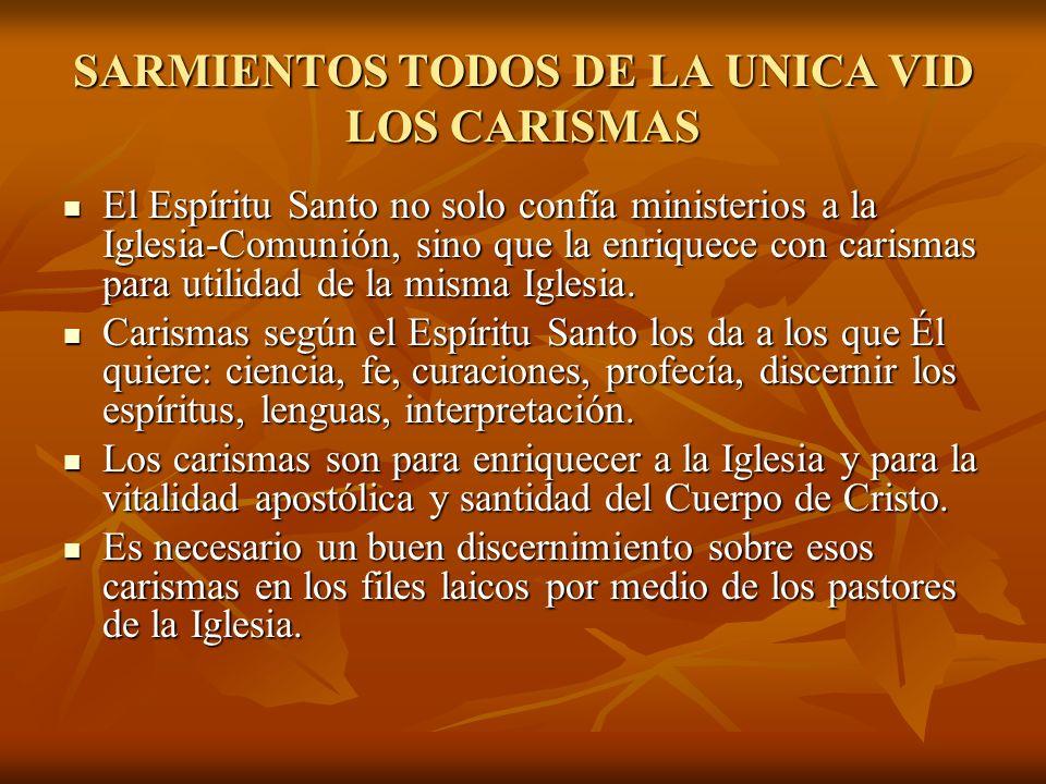 SARMIENTOS TODOS DE LA UNICA VID LOS CARISMAS