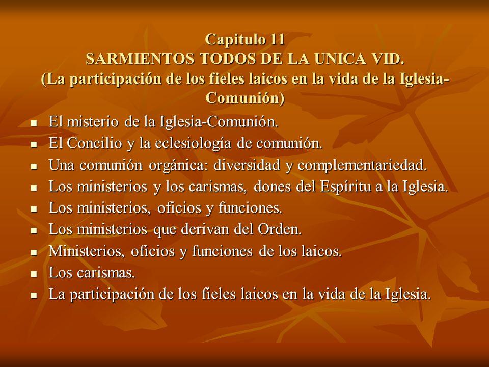 Capitulo 11 SARMIENTOS TODOS DE LA UNICA VID