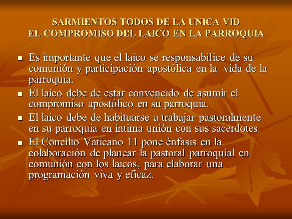 SARMIENTOS TODOS DE LA UNICA VID EL COMPROMISO DEL LAICO EN LA PARROQUIA